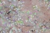 Linnen Viscose Digital Flower&Bird  Caramel_