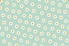 Cotton Daisy Mint