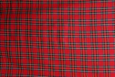 Scottish Stretch Check Red