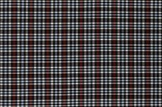 Scottish Stretch Little Check Black Red