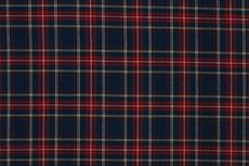 Scottish Stretch Check Blue Red