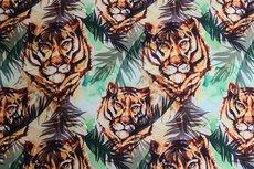 Soft Shell Tiger Mint