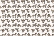 Cotton Zebra Off White