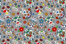 Cotton Jersey Colour Skulls Grey