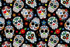 Cotton Jersey Colour Skulls Black