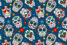 Cotton Jersey Colour Skulls Blue