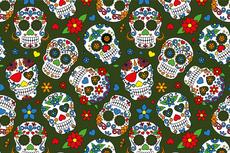 Cotton Jersey Colour Skulls Green