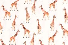 Cotton Jersey Giraffe Off White