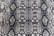 Cotton Digital Stretch Satin Snake Grey