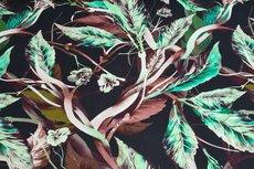 Cotton Digital Stretch Satin Flowers Black/Green