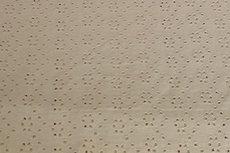 Cotton Broderie Jersey Sand