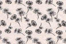 Cotton Jersey Flowers Beige/Creme