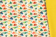 Soft Shell Dino Rainbow R