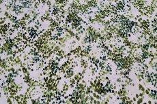 Viscose Retro Stains Green