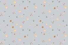 Cotton Jersey Digital Stars Light Grey