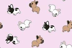 Cotton Jersey Tiny Bulldogs Light Pink