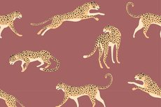 Cotton Jersey Leopard Stone Red