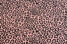 Cotton Jersey Melange Leo Coral/Salmon