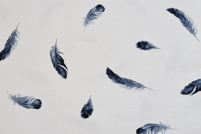 Cotton Jersey Feathers White/Blue